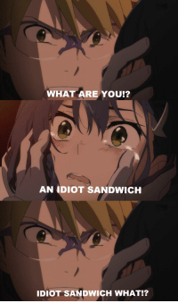 Idiot: WHAT ARE YOU!?  AN IDIOT SANDWICH  IDIOT SANDWICH WHAT!?