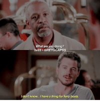 Memes, Grey, and 🤖: What are you doing?  3x03 GREYS CAPSS  I don't know... I have a thing for ferryboats greysanatomy | i miss my bby mark