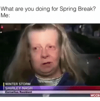 Me af 😂💀: What are you doing for Spring Break?  Me:  WINTER STORM  SHIRLEY NASH  Cornelius Resident  WCCB Me af 😂💀