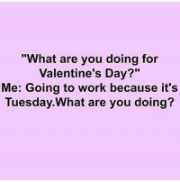 "Memes, 🤖, and Happy Tuesday: ""What are you doing for  Valentine's Day?""  Me: Going to work because it's  Tuesday. What are you doing? Happy Tuesday people!! TacoTuesday"