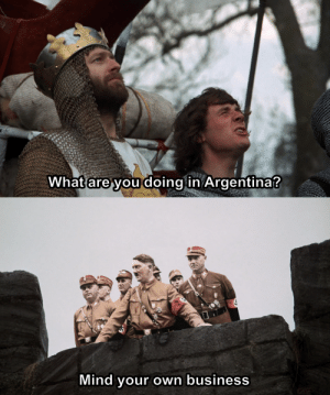 Monty Python is always a good investment: What are you doing in Argentina?  Mind your own business Monty Python is always a good investment