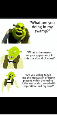 "What Are You Doing In My Swamp: ""What are you  doing in my  swamp?""  ""What is the reason  for your appearance in  this marshland of mine?""  Are you willing to tell  me the motivation of being  present within the realms  of the wet lands covered with  vegetation i call my own?"""
