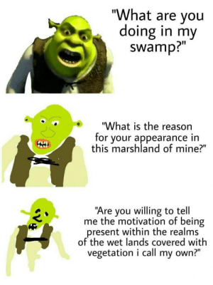 What Are You Doing In My Swamp Roblox Id Loud idea gallery