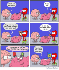 Food, Meh, and Memes: What are  you doing?  Okay, but why are  you filling Stomach  with junk food?  You've got to help me!  Even TONGUE has had enough!  I feel  sad.  It felt like  the right thing  to do.  Meh. Let's  see where  this goes.  theAwkwardyeti.com Eating emotions
