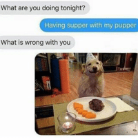 Memes, 🤖, and Ifunny: What are you doing tonight?  Having supper with my pupper  What is wrong with you . . . . barrontrunp lol epic lmao meme epic lol dank trump hillary wtf lmfao memes vine epic epic lmao dank lol lmfao ifunny memes jokes