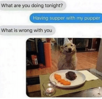 Supper with a Pupper via /r/wholesomememes https://ift.tt/2EnZTdf: What are you doing tonight?  Having supper with my pupper  What is wrong with you Supper with a Pupper via /r/wholesomememes https://ift.tt/2EnZTdf