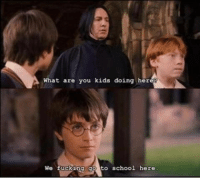 What are you kids doing hereg  We fucking go to school here <p>Snoopy Snape</p>