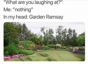 """: """"What are you laughing at?""""  Me: """"nothing""""  In my head: Garden Ramsay"""