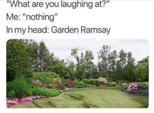 """Ramsay: """"What are you laughing at?""""  Me: """"nothing""""  In my head: Garden Ramsay"""