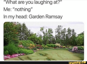 """What are you laughing at?"" Me: ""nothing"" In my head: Garden Ramsay 'ª! – popular memes on the site iFunny.co #gordonramsay #celebrities #what #laughing #in #garden #ramsay #pic: ""What are you laughing at?""  Me: ""nothing""  In my head: Garden Ramsay  ifunny.co ""What are you laughing at?"" Me: ""nothing"" In my head: Garden Ramsay 'ª! – popular memes on the site iFunny.co #gordonramsay #celebrities #what #laughing #in #garden #ramsay #pic"