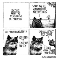 "Animals, Energy, and Apex: WHAT ARE YOU  RUNNING FROM  APEX PREDATOR  JOGGING  FROM THE  PERSPECTIVE  OF ANIMALS  THE HELL IS THAT  GUY DOING  ARE YOU GHASING PREY?  YOU NEED  TO  CONSERVE  ENERGY  IDONT  KNOW I DONT  UNDERSTAND  @JAKE LIKES ONIONS <p>Jogging from the perspective of animals via /r/wholesomememes <a href=""http://ift.tt/2Awv2WO"">http://ift.tt/2Awv2WO</a></p>"