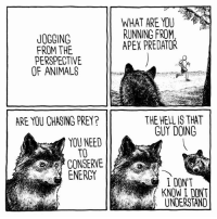 Animals, Dank, and Dumb: WHAT ARE YOU  RUNNING FROM  APEX PREDATOR  JOGGING  FROM THE  PERSPECTIVE  OF ANIMALS  THE HELL IS THAT  GUY DOING  ARE YOU CHASING PREY?  YOU NEED  TO  CONSERVE  ENERGY  I DON'T  KNOW I DONT  UNDERSTAND We're dumb in their eyes  By Jake Likes Onions