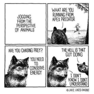 Animals, Confused, and Omg: WHAT ARE YOU  RUNNING FROM  APEX PREDATOR  JOGGING  FROM THE  PERSPECTIVE  OF ANIMALS  THE HELL IS THAT  GUY DOING  ARE YOU CHASING PREY?  YOU NEED  TO  CONSERVE  ENERCY  I DONT  KNOW I DONT  UNDERSTAND  @JAKE LIKES ONIONS omg-humor:Confused wolf…