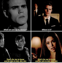 — [1x02-8x16] Stefan's so done with these two that's why he killed himself 🙊 no? Okay, it was a bad joke 🙈: What are you up to, Damon?  That's for me to know  and for you to dot, dot, dot.  IN STAGRAM  niandelenatvd  Where is it?  That's for me to know  and for you to dot, dot, dot. — [1x02-8x16] Stefan's so done with these two that's why he killed himself 🙊 no? Okay, it was a bad joke 🙈