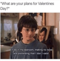 Funny, Memes, and Valentine's Day: What are your plans for Valentines  Day?  Ill be in my bedroom, making no noise  and pretending that I don't exist. SarcasmOnly