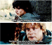 <p>This whole sub</p>: What arewe holding on to, Sam?  That there'ssome good in this world Mr.Frodo  And it's worth fighting for. <p>This whole sub</p>