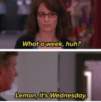 Well maybe if life wasn't so damn exhausting 🙄🙄🙄: What aweek, huh?  Lemon, it's Wednesday Well maybe if life wasn't so damn exhausting 🙄🙄🙄