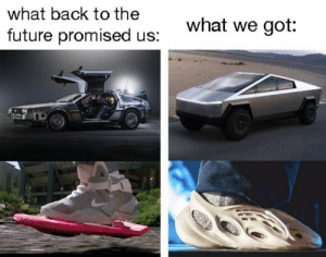 Expectations vs Reality: what back to the  what we got:  future promised us:  soles Expectations vs Reality