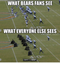 The Chicago Bears..: WHAT BEARS FANS SEE  WHATEVERYONE ELSE SEES  @NFL MEMES  MNF The Chicago Bears..