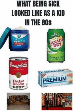 80s, Dank, and Chicken: WHAT BEING SICK  LOOKED LIKE AS A KID  IN THE 80S  ANADA  DRY  GINGERALE  amp  PREMIUM  Chicken  Noodle  SOUP
