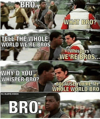 I Love You Bro: WHAT BRO?  TELL THE WHOLE  WORLD WE'RE BROS  WE'RE BROS...  WHISPER BRO?  -«BECAUSE YOURE MY  WHOLE WORLD BRO  IG I BLERD.VISION  BRO