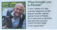 "Internet, Memes, and Saw: What brought you  to Florida?  ""I saw a photo of a dog  wearing sunglasses on the  Internet and the caption  said he lived in Florida  So, I came here to find him  and meet him and also  I GOT TO PET HIM  it was a great trip.""  59 <p><a href=""http://memehumor.net/post/166736099978/40-wholesome-memes-and-posts-that-will-restore"" class=""tumblr_blog"">memehumor</a>:</p>  <blockquote><p>40+ Wholesome Memes And Posts That Will Restore Your Faith In Humanity</p></blockquote>"