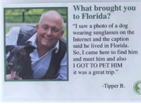 "Internet, Saw, and Florida: What brought you  to Florida?  ""I saw a photo of a dog  wearing sunglasses on the  Internet and the caption  said he lived in Florida.  So, I came here to find him  and meet him and also  I GOT TO PET HIM  it was a great trip.""  t 9  -Tipper B. This is great!😊😊😊👍👍👍"