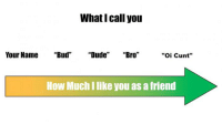 "Dank, 🤖, and Spectrum: What call you  Your Name ""Bud"" ""Dude"" ""Bro""  ""oi Cunt""  How Much like you as afriend My spectrum of friendship