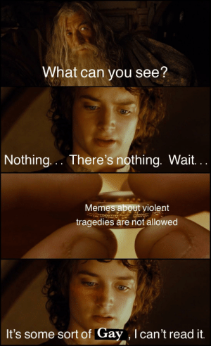 Memes, Violent, and Gay: What can you see?  Nothing.. . There's nothing. Wait.  Memes about violent  tragedies are not allowed  It's some sort of Gay,Ican't read it OC Maymay ♨Lord of the Mods (i.redd.it)