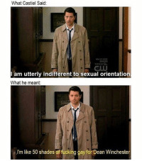 🌚🌚🌚: What Castiel Said  am utterly indifferent to sexual orientation.  What he meant:  .I'm like 50 shades of fucking gay for Dean Winchester 🌚🌚🌚