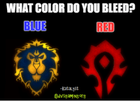 Memes, Blue, and Purple: WHAT COLOR DO YOU BLEED?  BLUE  -KataLyst I bleed blue.....occasionally purple.  - Katalyst