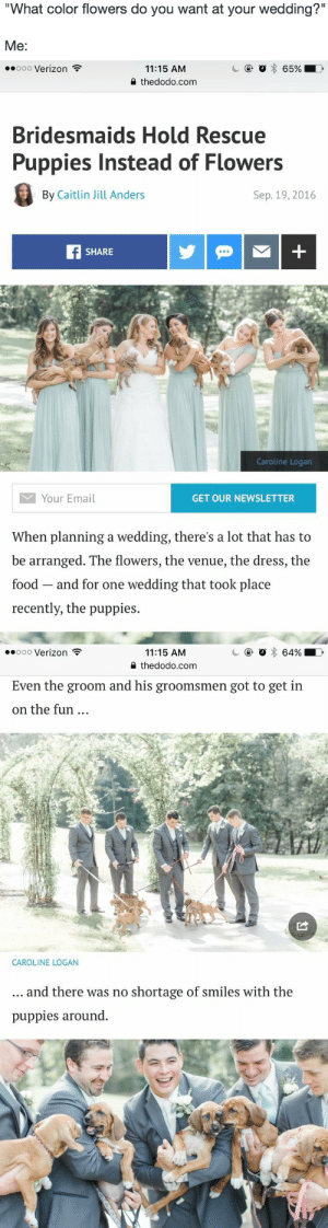 "surprisebitch:  tagging as /future reference : What color flowers do you want at your wedding?'""  Me:   .0o00 Verizon  11:15 AM  2 thedodo.com  Bridesmaids Hold Rescue  Puppies Instead of Flowers  By Caitlin Jill Anders  Sep. 19, 2016  SHARE  Caroline Logan  Your Email  GET OUR NEWSLETTER  When planning a wedding, there's a lot that has to  be arranged. The flowers, the venue, the dress, the  food and for one wedding that took place  recently, the puppies.   11:15 AM  0 thedodo.com  .ooo Verizon  Even the groom and his groomsmen got to get in  on the fun  CAROLINE LOGAN  and there was no shortage of smiles with the  puppies around. surprisebitch:  tagging as /future reference"