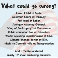 "Fast Food, Memes, and TV Shows: What could wrong?  Exxon Mobil at State.  Goldman Sachs at Treasury.  Fast food at Labor.  Anti-gay Attorney General.  ""King of Bankruptcy at Commerce.  Public education foe at Education.  World Wrestling Entertainment at SBA.  Climate change denier at EPA.  Mitch McConnells wife at Transportation.  And a Twitter addicted,  reality TV show-producing president. Via We The Progressives"