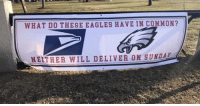 Well played Patriots fans...: WHAT D0 THESE EAGLES HAVE IN COMMON?  NEITHER WILL DELIVER ON SUNDA Well played Patriots fans...