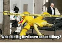 Rip Birb: What did Big Bird know about Hillary? Rip Birb