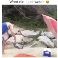 Memes, Watch, and Tag Someone: What did I just watch Tag someone who would do this 😂