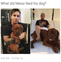 Soccer, Sports, and Messi: What did Messi feed his doa?  8:46 AM-20 May 18 These pictures are 7 months apart 😮🐶