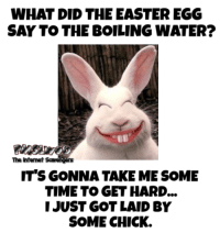 <p>Hilarious Easter pictures  Chuckles are rising  PMSLweb </p>: WHAT DID THE EASTER EGG  SAY TO THE BOILING WATER?  The Intenet  IT'S GONNA TAKE ME SOME  TIME TO GET HARD...  IJUST GOT LAID BY  SOME CHICK. <p>Hilarious Easter pictures  Chuckles are rising  PMSLweb </p>