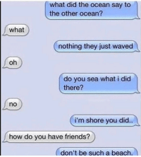 Friends, Funny, and Lol: what did the ocean say to  the other ocean?  what  nothing they just waved  oh  do you sea what i did  there?  no  i'm shore you did.  how do you have friends?  don't be such a beach. Tag a goofy lol