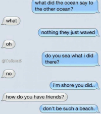 Punny.: what did the what did the ocean say to  the other ocean?  what  nothing they just waved  oh  do you sea what i did  TrolismxD  there?  no  i'm shore you did.  how do you have friends?  don't be such a beach. Punny.