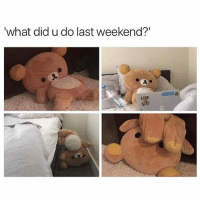 """Memes, Pictures, and 🤖: what did u do last weekend?"""" My weekend in pictures 🐻 goodgirlwithbadthoughts 💅🏼"""