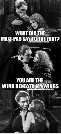 maxi pad: WHAT DIDTHE  MAXI-PAD SAYTOTHE FART  YOU ARE THE  WIND BENEATH MYWINGS