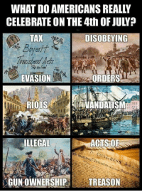 Memes, 4th of July, and Treason: WHAT DO AMERICANS REALLY  CELEBRATE ON THE 4th OF JULY?  TAX  ownshard Aaos  EVASIONE  DISOBEYING  ORDERS  RIOTS  VANDALISM  ILLEGAL  ACTS OF  GUN OWNERSHIP TREASON #NeverForget