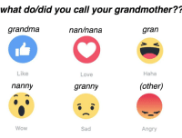 i'm just curious sorry it's not a wholesome meme plz don't get mad i'm gunna schedule tonnes now <3: what do did you call your grandmother??  grandma  gran  nan nana  Haha  Like  Love  (other)  nanny  granny  Wow  Sad  Angry i'm just curious sorry it's not a wholesome meme plz don't get mad i'm gunna schedule tonnes now <3