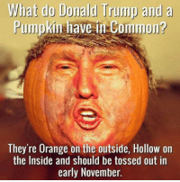 OK, this made me LOL.: What do Donald Trump and a  Pumpkin have in Common?  They're Orange on the outside, Hollow on  the Inside and should be tossed out in  early November. OK, this made me LOL.