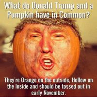 LOL! This one is just right for the season...: What do Donald Trump and  a  Pumpkin have in ommon?  They're Orange on the outside, Hollow on  the Inside and should be tossed out in  early November. LOL! This one is just right for the season...