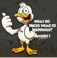 Laugh my ducking ass off! 😂 New style coming tomorrow! 👌 Send in your dadjokes-puns and we will shout you out! . . . . . dadjoke funny puns funnypictures photooftheday meme duck wedding tuxedo love like: WHAT DO  DUCKS WEAR TO  WEDDINGS 2  EDO Laugh my ducking ass off! 😂 New style coming tomorrow! 👌 Send in your dadjokes-puns and we will shout you out! . . . . . dadjoke funny puns funnypictures photooftheday meme duck wedding tuxedo love like
