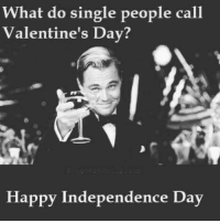 Single: What do single people call  Valentine's Day?  Happy Independence Day