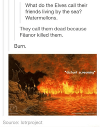 """harry potter jokes: What do the Elves call their  friends living by the sea?  Watermellons.  They call them dead because  Feanor killed them  Burn  """"distant screaming  Source: lotrproject"""