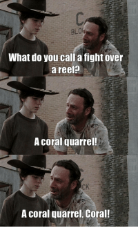Reef fight: What do you call a fight over  a reef  A Coral quarrel!  CK  A coral quarrel, Coral! Reef fight